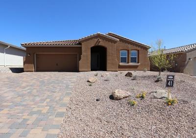 Marana Single Family Home For Sale: 14182 N Golden Barrel Pass