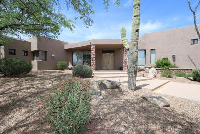 Pima County, Pinal County Single Family Home For Sale: 14249 N Honey Bee Trail