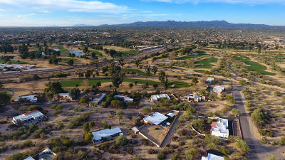 Pima County Single Family Home For Sale: 8050 N Della Robia Place