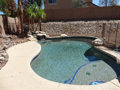 Tucson Single Family Home For Sale: 8290 N Morning Willow Court