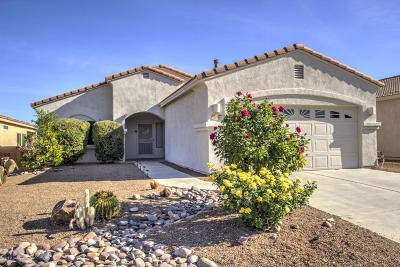 Green Valley Single Family Home For Sale: 2193 S Via Pompilo