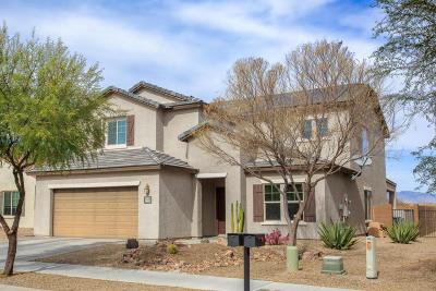 Single Family Home For Sale: 10641 E Realgar Place