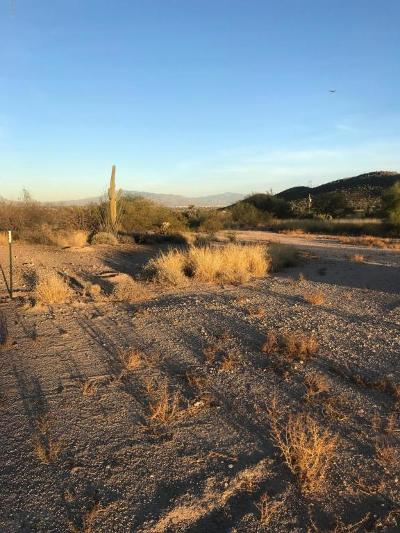 Residential Lots & Land For Sale: 2535 &2537 W Ajo Highway