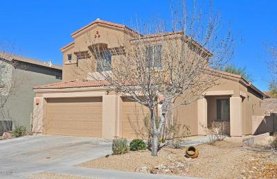 Vail AZ Single Family Home For Sale: $274,900