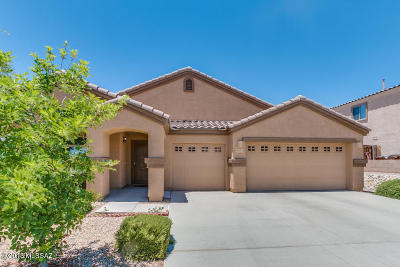 Tucson Single Family Home For Sale: 8191 N Willow Blossom Drive