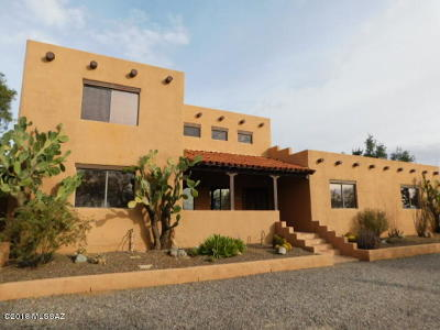 Tucson Single Family Home For Sale: 10800 N Thornydale Road