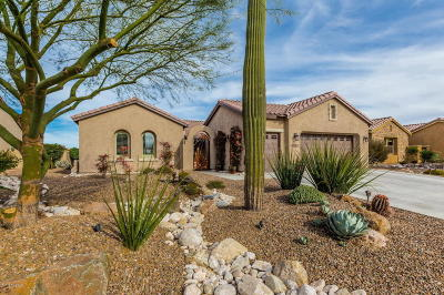 Oracle Single Family Home For Sale: 31907 S Bighorn Drive