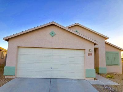 Pima County, Pinal County Single Family Home For Sale: 2688 E Paseo La Tierra Buena