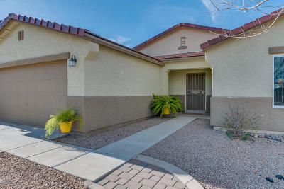Vail Single Family Home For Sale: 564 E Sterling Canyon Drive