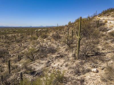 Tucson Residential Lots & Land For Sale: 12825 E Cabeza De Vaca