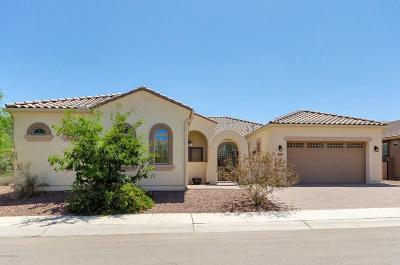 Marana Single Family Home For Sale: 8651 W Epworth Road
