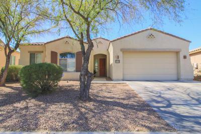 Tucson Single Family Home For Sale: 8525 N Crosswater Loop