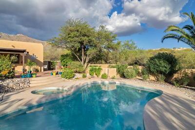 Tucson Single Family Home For Sale: 6300 E Paseo Otono
