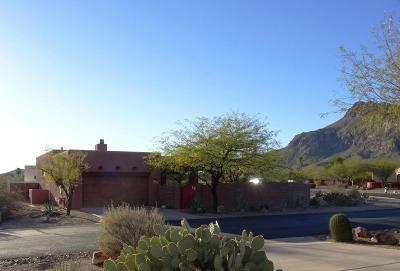 Pima County Single Family Home For Sale: 5621 W Lone Star Drive
