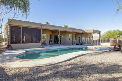 Pima County Single Family Home For Sale: 12301 N Sunkist Springs Place