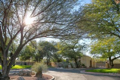 Tucson Townhouse For Sale: 5620 E Binghampton Drive