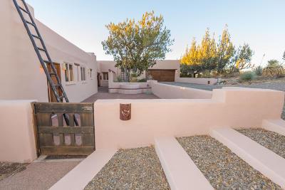Sonoita Single Family Home For Sale: 38 Windmill Drive