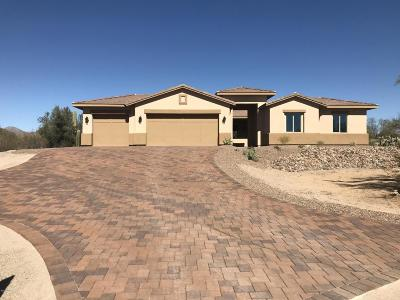Pima County Single Family Home For Sale: 11071 N Camino De Oeste