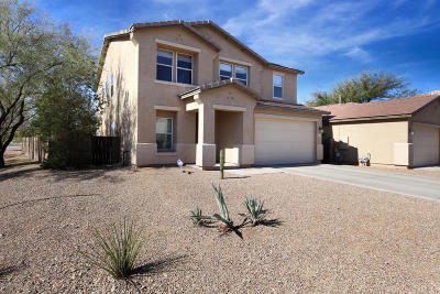 Pima County Single Family Home For Sale: 3525 N Riverhaven Drive