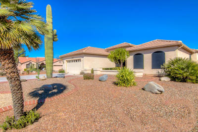 Pima County, Pinal County Single Family Home For Sale: 37329 S Arroyo Verde Drive