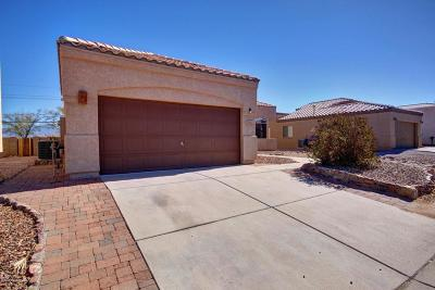 Tucson Single Family Home For Sale: 8381 S Camino Bengala