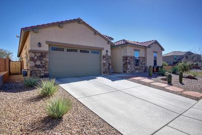 Pima County Single Family Home Active Contingent: 12490 N Wind Runner Pw