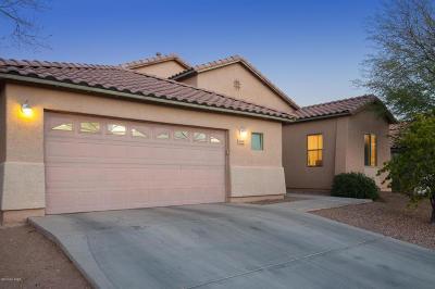 Pima County Single Family Home For Sale: 3669 S Desert Cache Road