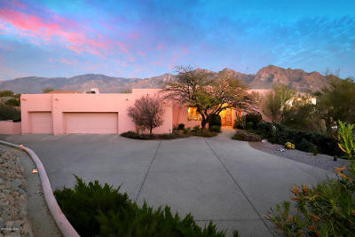 Pima County Single Family Home For Sale: 10770 N Summer Moon Place