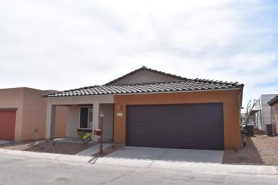Sahuarita Single Family Home For Sale: 1343 W Vuelta Oruga