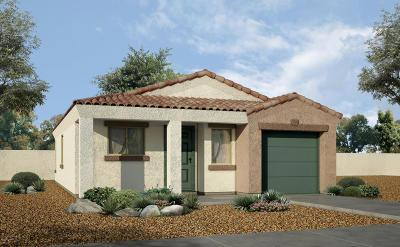 Sahuarita Single Family Home For Sale: 1317 W Vuelta Arvizu