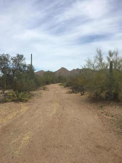 Tucson Residential Lots & Land For Sale: Sec Mile Wide Rd & Sandario Rd