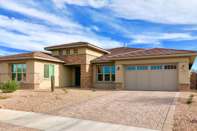 Pima County Single Family Home For Sale: 13462 N Silver Cassia Place