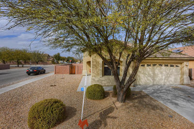 Pima County, Pinal County Single Family Home For Sale: 3989 E Coolbrooke Drive