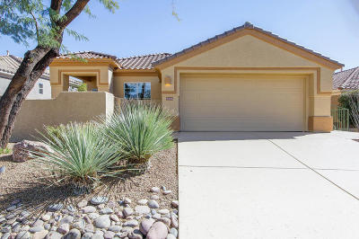 Pima County Single Family Home For Sale: 5086 W Desert Eagle Circle