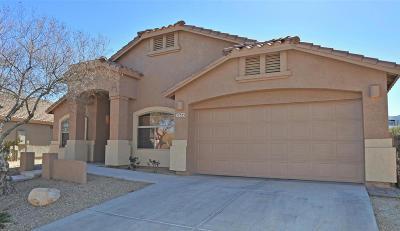 Corona de Tucson Single Family Home For Sale: 17353 S Sienna Bluffs Trail