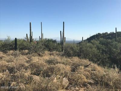 Tucson Residential Lots & Land For Sale: 7037 N Mercer Spring Place #158