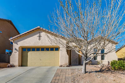 Vail Single Family Home For Sale: 17092 S Painted Vistas Way