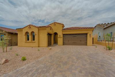 Pima County Single Family Home For Sale: 13281 N Rainbow Cactus Court