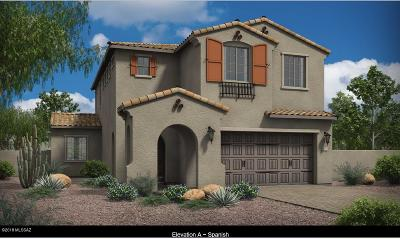 Pima County Single Family Home For Sale: 967 W Baccata Court
