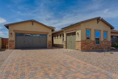 Pima County Single Family Home For Sale: 13233 N Rainbow Cactus Court