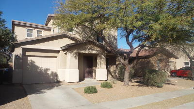 Pima County Single Family Home For Sale: 3481 N Sierra Springs Drive