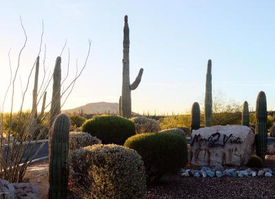 Tucson Residential Lots & Land For Sale: 3159 W Salvia Drive #73