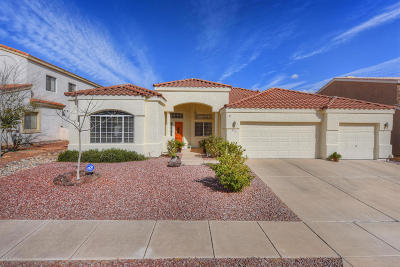 Oro Valley Single Family Home For Sale: 12550 N Lantern Way