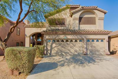 Sahuarita Single Family Home For Sale: 539 E Camino Luna Azul