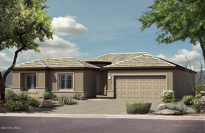 Vail AZ Single Family Home For Sale: $305,447