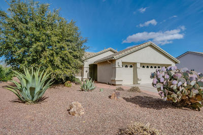 Green Valley  Single Family Home For Sale: 1141 N Desert Deer Pass