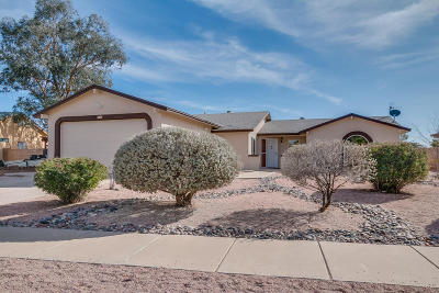 Pima County Single Family Home For Sale: 6824 N De Chelly Loop