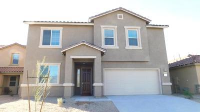 Pima County Single Family Home For Sale: 8256 E Magee Hill Loop E