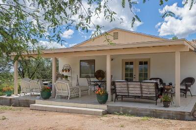 Tubac Single Family Home For Sale: 95 Keating Circle