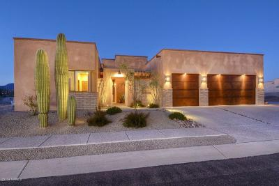 Pima County Single Family Home For Sale: 4200 W Summer Ranch Place
